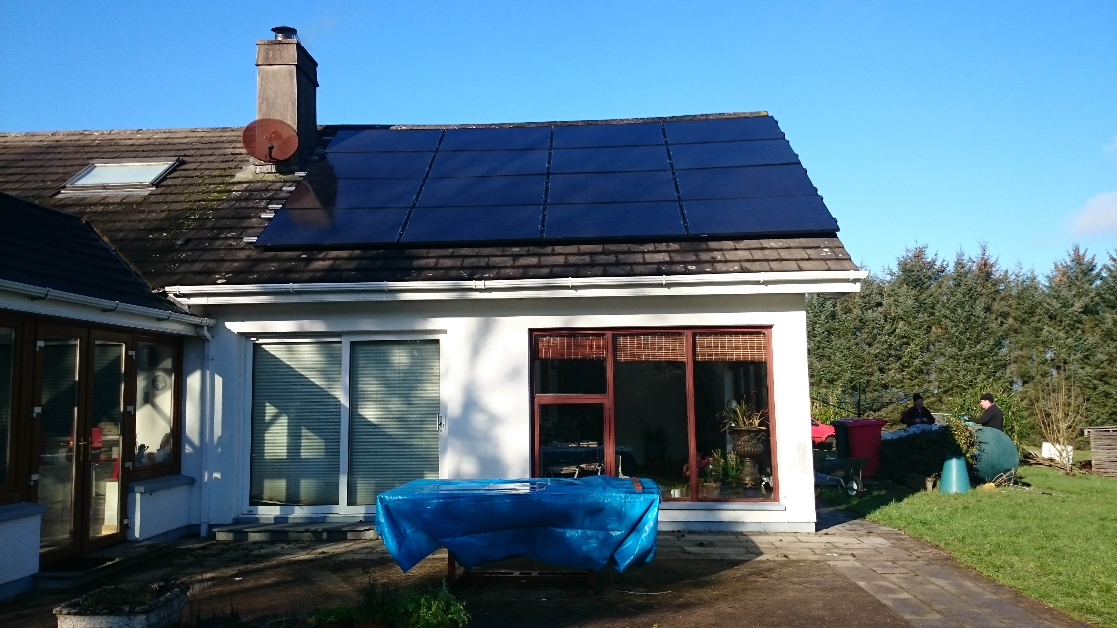 4-kw-in-Watergrasshill-nest-job-trees-to-be-topped